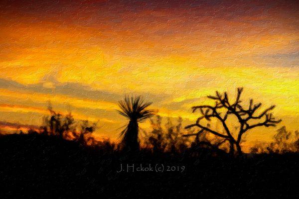 Mojave Desert, NV