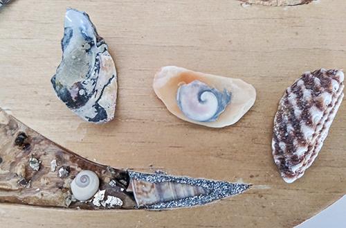 shell work
